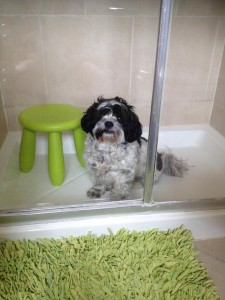 Our £3 IKEA shower stool
