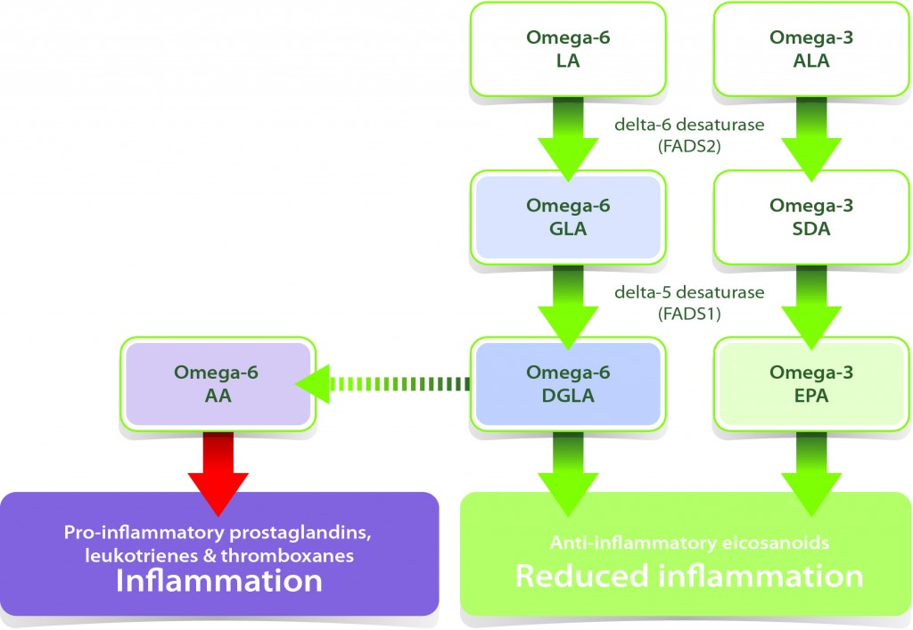 Anti-inflammatory-1024x707
